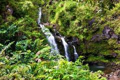 Cascade à écriture ligne par ligne tropicale Photo stock