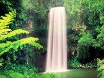 Cascade à écriture ligne par ligne tropicale Image libre de droits