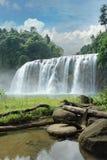 Cascade à écriture ligne par ligne tropicale dans la jungle. Images stock