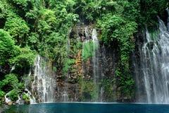 Cascade à écriture ligne par ligne tropicale dans la jungle Photographie stock libre de droits