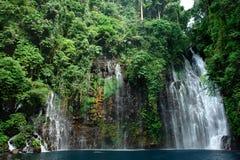 Cascade à écriture ligne par ligne tropicale dans la jungle Images stock