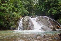 Cascade à écriture ligne par ligne tropicale dans la jungle Image stock