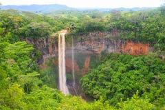 cascade à écriture ligne par ligne tropicale de forêt photo libre de droits