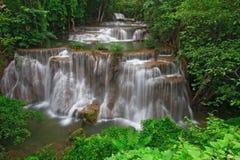 Cascade à écriture ligne par ligne tropicale de forêt humide Photographie stock