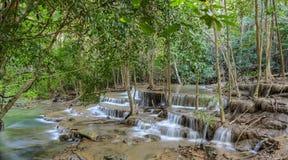 Cascade à écriture ligne par ligne tropicale de forêt humide en Thaïlande Photos libres de droits