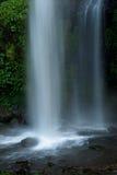 cascade à écriture ligne par ligne tropicale de forêt humide exotique Photographie stock
