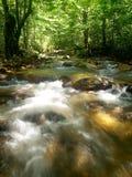 Cascade à écriture ligne par ligne tropicale de montagne Photos stock