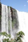 cascade à écriture ligne par ligne tropicale du Brésil Photo libre de droits