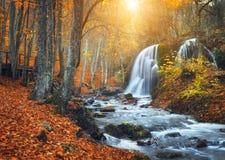 Cascade à la rivière de montagne dans la forêt d'automne au coucher du soleil photo libre de droits