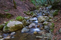 Cascade royalty-vrije stock afbeeldingen