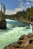 Cascade. Vertical photo of cascade in Yellowstone National Park Royalty Free Stock Photography