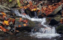 Cascade. Shot of a autumn brook stock photo