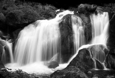 Cascade. Water cascading over mossy rocks in B&W Royalty Free Stock Photos