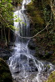 Cascade Photo stock