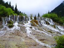 The cascade. In Jiuzhaigou,Sichuan,China,white waterfall with flourish vegetation royalty free stock image