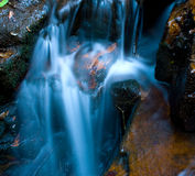 Cascade. Little cascade water flowing over hard rocks and moss with a smooth fresh look Stock Image