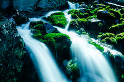 Water Falling Over Mossy Rocks Royalty Free Stock Photo