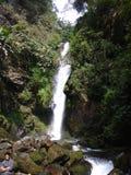 cascade anonyme au Sikkim images libres de droits