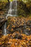 Cascade au-dessus des verts luxuriants et du feuillage d'automne d'or Photographie stock libre de droits