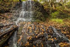 Cascade au-dessus des verts luxuriants et du feuillage d'automne d'or Images stock