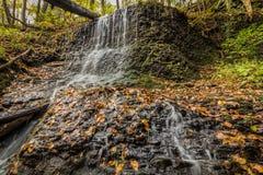 Cascade au-dessus des verts luxuriants et du feuillage d'automne d'or Photo stock