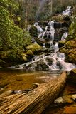 Cascade au printemps Photographie stock