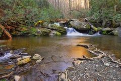 Cascade au printemps Image stock