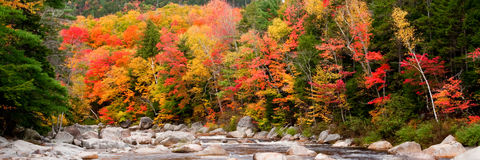 Cascade with Autumn Colors. Panoramic View of Cascade with Fall Foliage stock photos