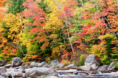 Cascade with Autumn Colors Stock Photo