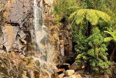 Cascade aux automnes de Steavenson Photo stock