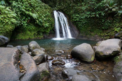 Cascade aux Ecrevisses in Guadeloupe Royalty Free Stock Photo