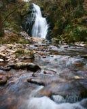 Cascade avec de l'eau l'écoulement de l'eau au-dessus des roches dans une forêt Images stock