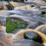 Cascade avec des roches dans la forêt Photographie stock