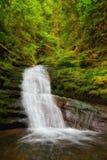 Cascade avec le feuillage luxuriant en Washington State Images stock