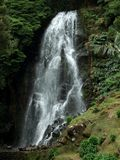 Cascade at the Azores Royalty Free Stock Photo