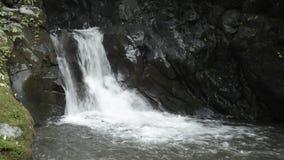 Cascade between bedrock. White small cascade falling between dark bedrock in Miyazaki stock video