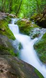 Cascade in big canyon, Stock Images