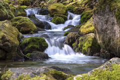 Cascade Bigar . The National Park Cheile Nerei ROMANIA. Cascade Bigar . Cheile Nerei ROMANIA Royalty Free Stock Photos