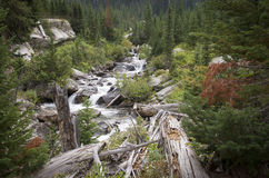 Cascade Canyon. The creek flowing down through Cascade Canyon in Grand Teton National Park Stock Photos