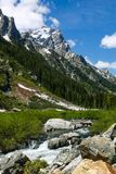 Cascade Canyon creek in the Western United States. stock photos