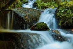 Cascade - cascade dans la forêt d'automne Photographie stock
