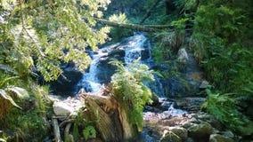 Cascade Charlemagne in de de Vogezen-bergen La Frankrijk stock afbeelding