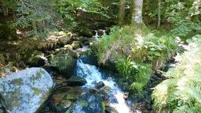 Cascade Charlemagne in de de Vogezen-bergen La Frankrijk royalty-vrije stock foto