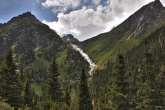 Cascade congelée dans la forêt de montagne Images libres de droits