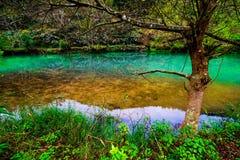 Cascade coulant dans le courant de l'eau Image libre de droits