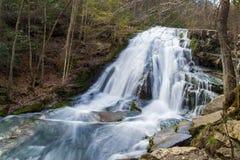 Cascade courue par hurlement, la Virginie, Etats-Unis photos stock