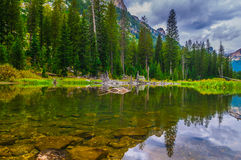 Cascade Creek - Grand Teton National Park Stock Image