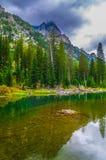 Cascade Creek - Grand Teton National Park Royalty Free Stock Photos