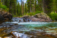 Cascade Creek Grand Tetons Stock Image