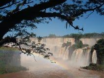 Cascade à écriture ligne par ligne d'Iguazu, Brésil-Argentine Photographie stock